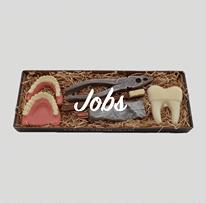 Jobs / Erhverv